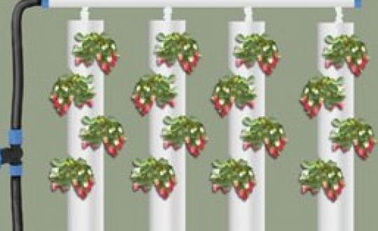 Как сделать колонну для клубники